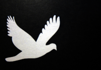 Graphic of a white bird on a black background