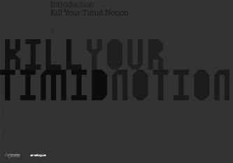 Kill Your Timid Notion 04 brochure cover
